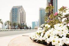 Dubai gataplats Arkivbilder