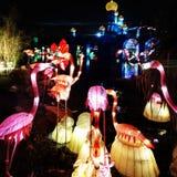 Dubai Glow Garden Royalty Free Stock Image