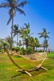 Dubai. Heavenly oasis in Ras al Khaimah. The beach with sunbeds and sunshades in Dubai, on the shores of the Arabian Gulf. Toning. Stock Photography