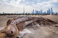 Dubai horisont från öknen Arkivbilder