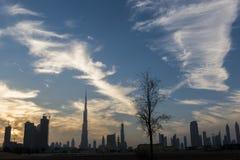Dubai horisont i skymning Royaltyfri Fotografi