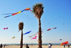 Dubai International Kite Festival. This image was taken in Dubai Jumeirah Beach Royalty Free Stock Photos