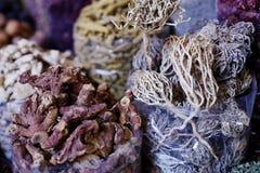Dubai krydda Souk Royaltyfri Bild