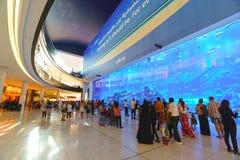 The Dubai Mall stock photos