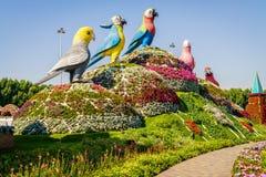 Dubai Miiracle trädgård Arkivbild
