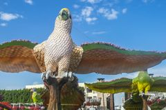 Dubai miracle garden. With over million flowers on sunny day Royalty Free Stock Photo