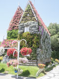 Dubai Miracle Garden Royalty Free Stock Images