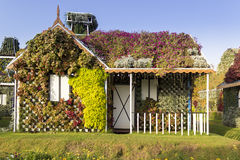 Dubai Miracle Garden House Covered with Different Flowers Royalty Free Stock Photography