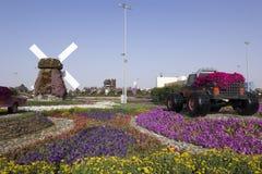 Dubai Miracle Garden. Landscape orientation royalty free stock photos