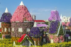 Dubai miracle garden stock photo