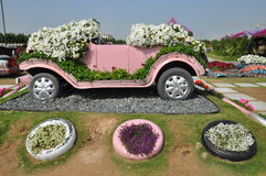 Dubai Miracle Garden in the UAE Royalty Free Stock Photography