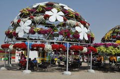 Dubai Miracle Garden in the UAE Stock Photo