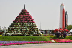 Dubai Miracle Garden in the UAE Stock Images
