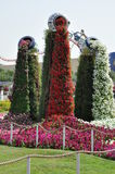 Dubai Miracle Garden in the UAE Royalty Free Stock Image