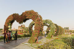 Dubai Miracle Garden in the UAE. Dubai Miracle Garden is famous for its extraordinary flower installations. A couple of people walking around at the park Royalty Free Stock Photography