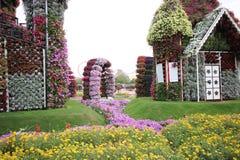 Dubai mirakelträdgård Arkivbild