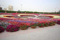 Dubai mirakelträdgård Royaltyfria Foton