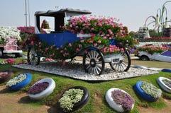 Dubai mirakelträdgård i UAE Royaltyfri Bild