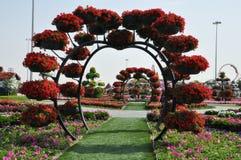 Dubai mirakelträdgård i UAE Arkivbild