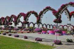 Dubai mirakelträdgård i UAE Royaltyfria Foton