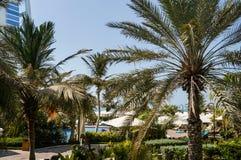 dubai Pendant l'été de 2016 Oasis de l'hôtel de plage de Jumeirah sur le golfe Persique Photographie stock