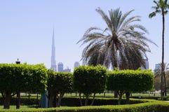 Dubai Safa Park royalty free stock photo