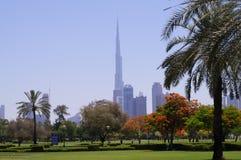 Dubai Safa Park. That's a crazy place Stock Photo