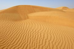 Dubai, sanddune in the desert. Dubai, scenic sanddune in the desert Stock Images