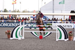 Dubai Showjumping Royalty Free Stock Photo