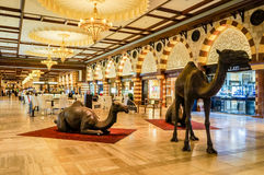 Dubai. Summer 2016. The luxurious interior of marble largest shopping store Dubai Mall stock photos