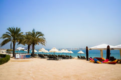 Dubai. In the summer of 2016. Oasis of the Kempinski The Palm hotel on the Persian Gulf, Jumeirah. Oasis of the Kempinski The Palm hotel on the Persian Gulf Stock Photos