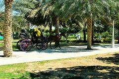 Dubai UAE stockbilder