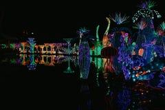DUBAI, UAE - 6 de enero: Resplandor del jardín de Dubai en Dubai, UAE, según lo visto en Jann 06, 2019 Se separa a través de 40 a imagen de archivo libre de regalías