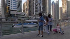 Dubai, UAE - 11 de janeiro de 2018: gaivotas de alimentação da família árabe em que que voam sobre a água no passeio no porto UAE vídeos de arquivo