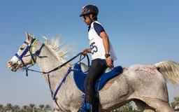 Rider participating in an endurance race. Dubai, UAE - Dec 19, 2014: Rider and his horse participating in a desert endurance race royalty free stock image
