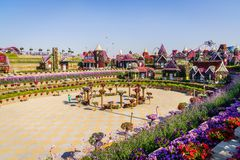 Dubai Miiracle Garden Royalty Free Stock Image