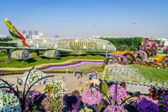 Dubai Miiracle Garden Stock Photo