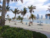 DUBAI UAE - FEBRUARI 02, 2014 parkerar den Jumeirah stranden i Dubai Arkivfoto