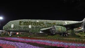 Dubai UAE - Januari 18, 2018: flygplan för konstobjektemirater som täckas med blommor i Dubai mirakelträdgård dekorativt arkivfilmer