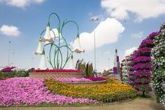 DUBAI UAE - JANUARI 20: Mirakelträdgård i Dubai, på Januari 20, Arkivbilder