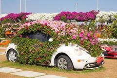 DUBAI, UAE - JANUARY 20: Miracle Garden in Dubai, on January 20,. 2014, Dubai, UAE. Beautiful Miracle Garden with 45 million flowers Royalty Free Stock Images