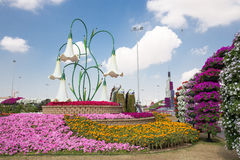 DUBAI, UAE - JANUARY 20: Miracle Garden in Dubai, on January 20, Stock Images