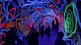 Dubai, UAE - January 13, 2018: Light tunnel with creative flowers, Magical nights in Dubai, United Arab Emirates. Arabian woman shooting video on smartphone stock video