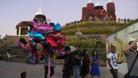 Dubai, UAE - January 18, 2018: man seller balloons with Disney cartoon characters in evening in Dubai Miracle Garden on. Background decorative floral hill stock footage