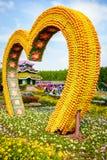 Dubai Miiracle Garden Royalty Free Stock Photo