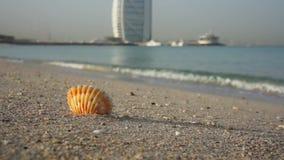 Dubai, Uae - January 21, 2018: Sea shell on Dubai sandy beach, travel concept with Burj al Arab on the background. stock footage