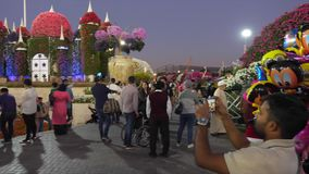 Dubai, UAE - January 18, 2018: seller balloons with Disney characters in evening in Dubai Miracle Garden and arab people. Walking and photographing on stock video