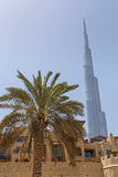 DUBAI, UAE - MAY 14, 2016: Burj Khalifa tower. DUBAI, UAE - MAY 14, 2016: sight of Dubai with Burj Khalifa tower Royalty Free Stock Photography
