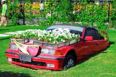 DUBAI, UAE - NOV, 2013: Fun cartoon car made with flowers at the Miracle Garden in Dubai. United Arab Emirates.  royalty free stock photography