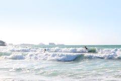 Dubai, UAE 25. November 2017 Surfer auf dem Jumeira öffnen Strand Stockfotografie